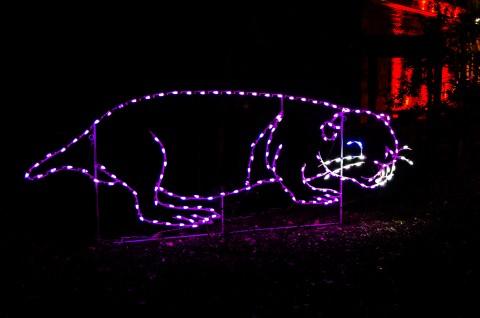 Naked Mole-Rat Light Sculpture