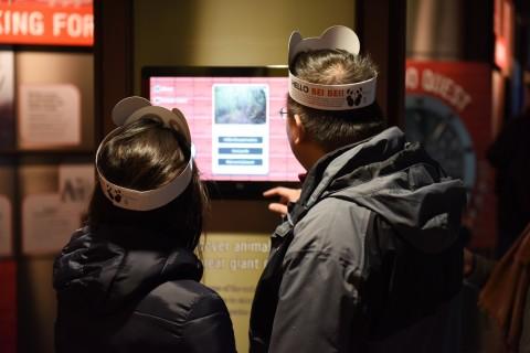 Two visitors wearing paper panda hats interact with a touchscreen exhibit in the Panda House during the Smithsonian's National Zoo's Giant Panda Housewarming Celebration