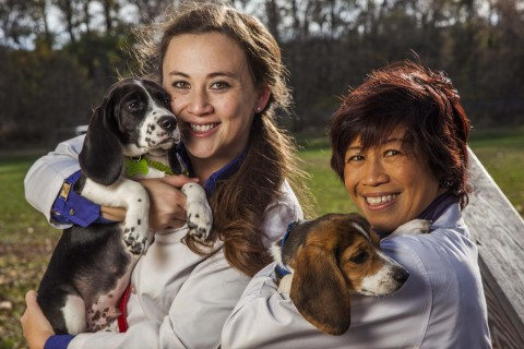 women holding dogs