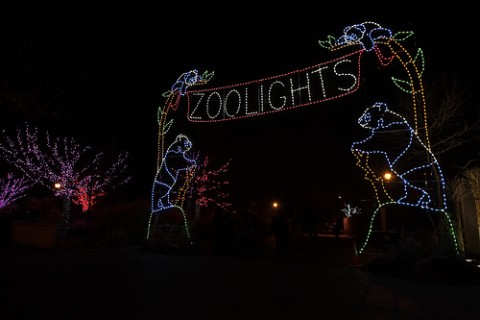 large light display