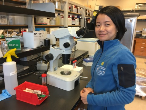 SCBI Researcher Pei-Chih Lee