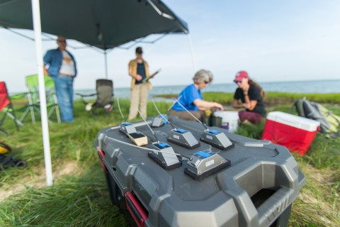 GeoTrak GPS/Argos satellite tags sit on a table. Scientists in the background examine a brown pelican.
