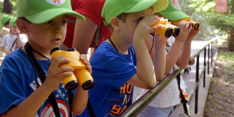 children using binoculars and looking at an exhibit