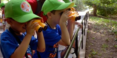 children looking at an exhibit using binoculars