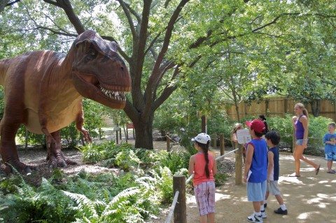 Visitors to a Zoo or theme park look at a large, animatronic T. rex dinosaur
