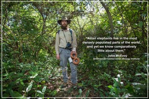 """A photo of SCBI researcher John McEvoy in a forest in Myanmar holding an elephant GPS collar. The photo has a quote: """"Asian elephants live in the most densely populated parts of the world, and yet we know comparatively little about them."""" - John McEvoy"""