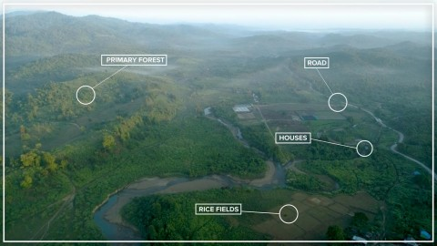 An aerial photo of Myanmar forest with callouts indicating where primary forest, road, houses and rice fields are located