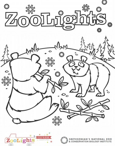 "A coloring sheet with two pandas eating bamboo in a winter scene with pine trees and snowflakes. The words ""ZooLights"" is at the top."