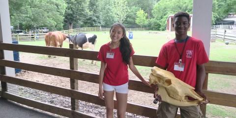teen volunteers at the Kids Farm