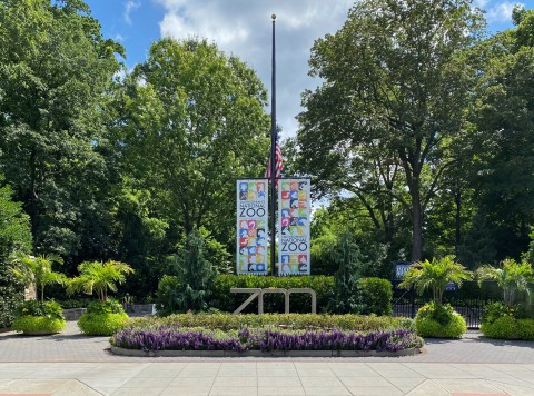 The entrance gate at the Smithsonian's National Zoo