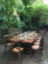 A long table set for a meal and surrounded by chairs set up in the rainforest of the Smithsonian's National Zoo's Amazonia exhibit