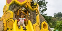 A child sits at the top of a slide sculpted to look like a bee hive overflowing with honey at the Smithsonian's National Zoo's Me and the Bee playground