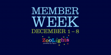 "The text ""Member Week, December 1-8"" and the ZooLights, powered by Pepco, logo"