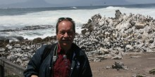 Steve Sarro poses in front of some African Penguins