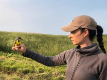 Virginia Working Landscapes program director Amy Johnson holds an eastern meadowlark.