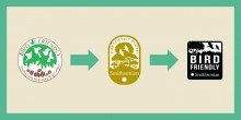 Three versions of the Bird Friendly Coffee logo arranged from oldest on the left to newest on the right with arrows pointing from left to right