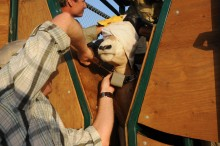 Smithsonian scientist Jared Stabach collaring an oryx