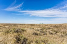 Grasslands of the American Prairie Reserve in Montana under a bright blue sky with a few whispy clouds on a sunny day
