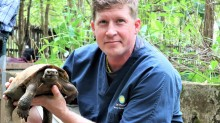 Matt Evans holding a turtle at a facility in Myanmar.