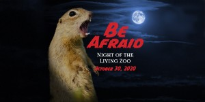 "A graphic of a dark night sky with a bright moon and a large prairie dog with its mouth open showing its teeth. Next to it, text reads ""Be Afraid. Night of the Living Zoo. October 30, 2020"""