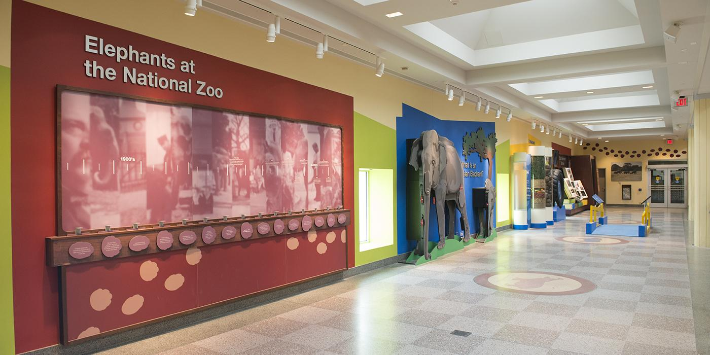 inside of the elephant house exhibit