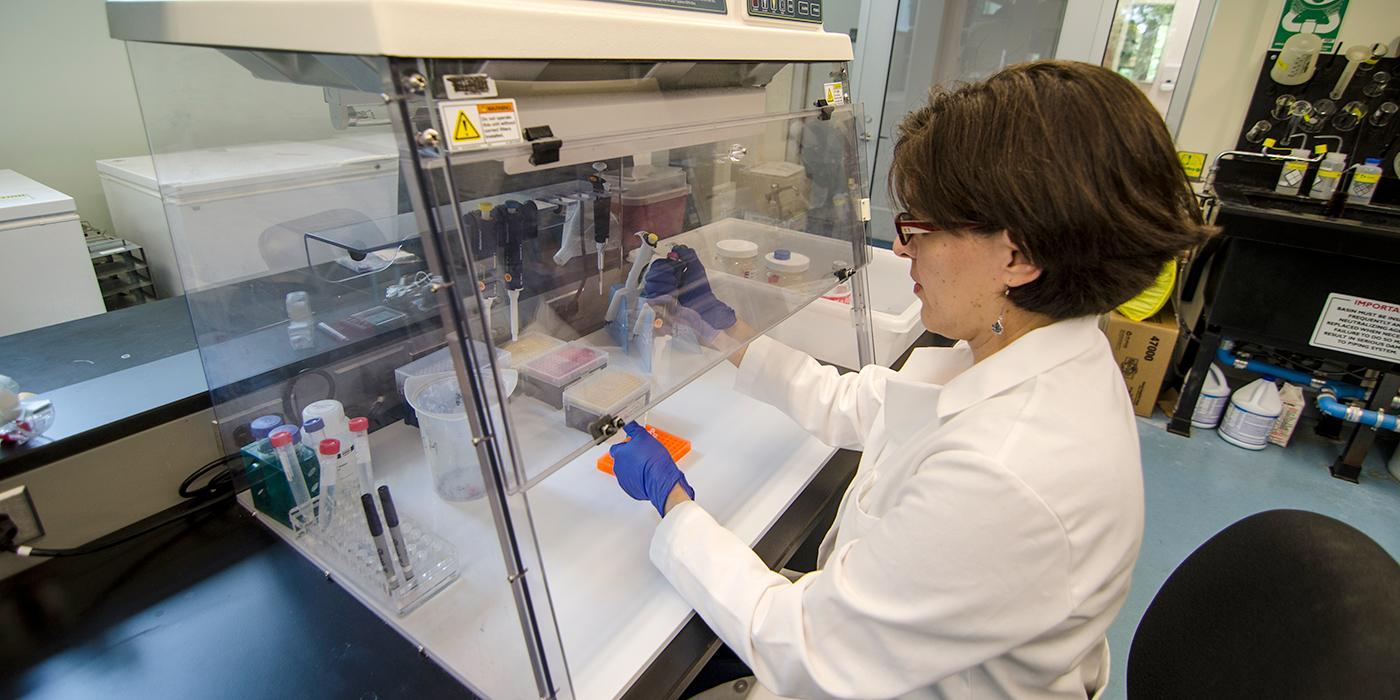 women with pipette extracting dna