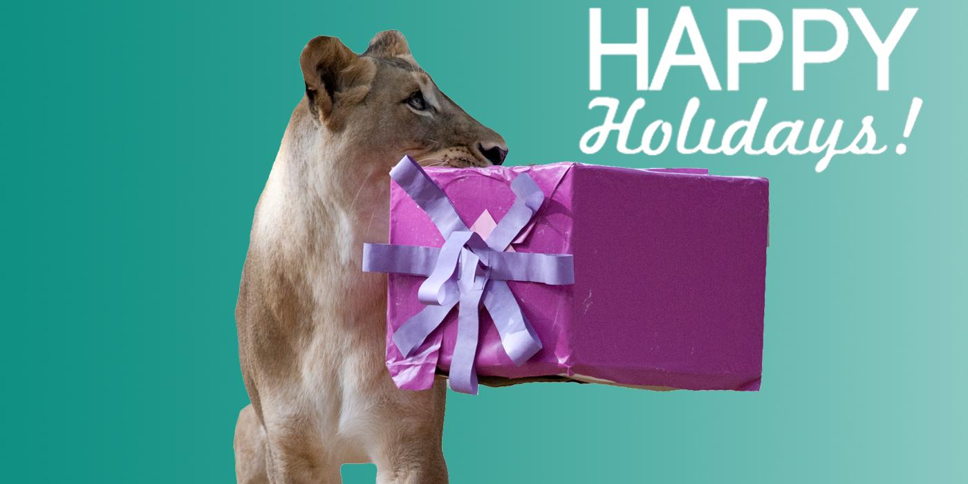 """a lioness holds a present in her mouth. the words """"happy holidays"""" overlays the photo"""