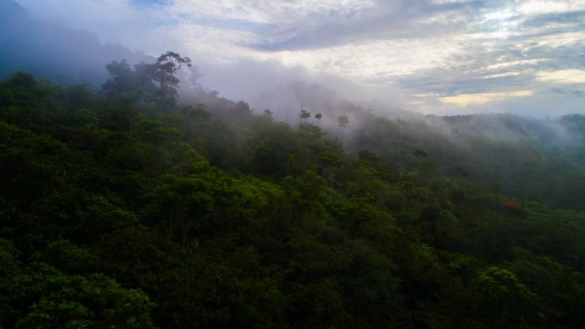 A landscape photo of Mamoni Valley Preserve in Panama