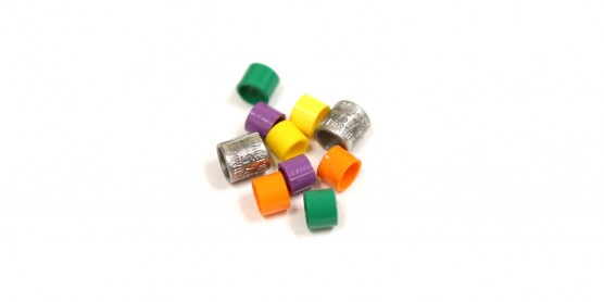 Aluminum and colored bird bands (yellow, purple, orange and green) used for tagging and re-sighting birds.