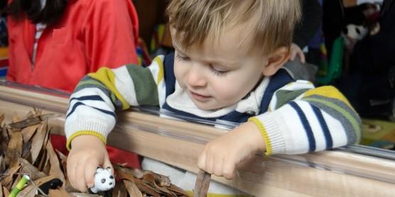 Little boy plays with plastic panda