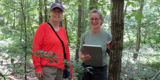 Citizen Scientists Discover Endangered Orchid in Virginia