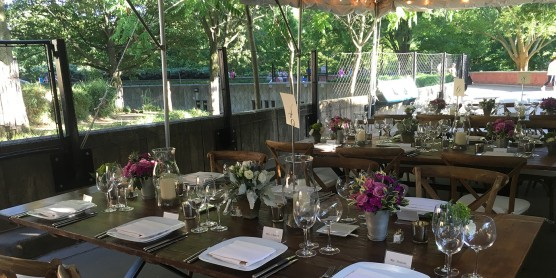 Dining tables and chairs set with plates, silverware, glasses and flowers in an area of the Smithsonian's National Zoo that overlooks trees and an animal habitat