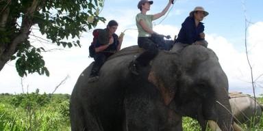 scientists doing GPS work in Myanmar