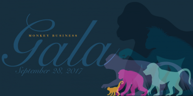 Monkey Gala graphic with illustrated monkeys and apes in various colors on the right and text on the left