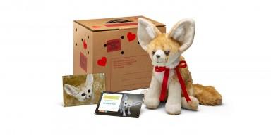 Adopt a Fennec Fox