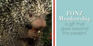 FONZ Gift membership ad