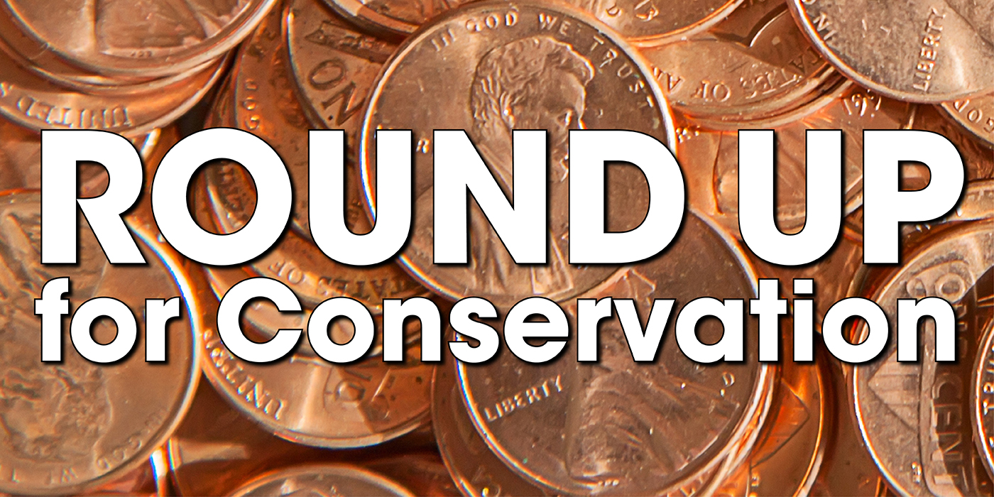"A graphic featuring a photo of pennies with the text ""Round Up for Conservation"":"