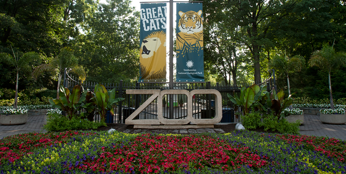 "The entrance to the Smithsonian's National Zoo, featuring a large concrete sculpture of the word ""ZOO"" situated behind a colorful flowerbed"